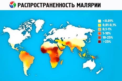Малярия - возбудитель, симптомы, лечение, профилактика
