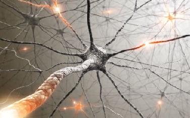Что такое рассеянный склероз у молодых