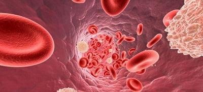 Общий анализ крови и анализ крови на лейкоциты